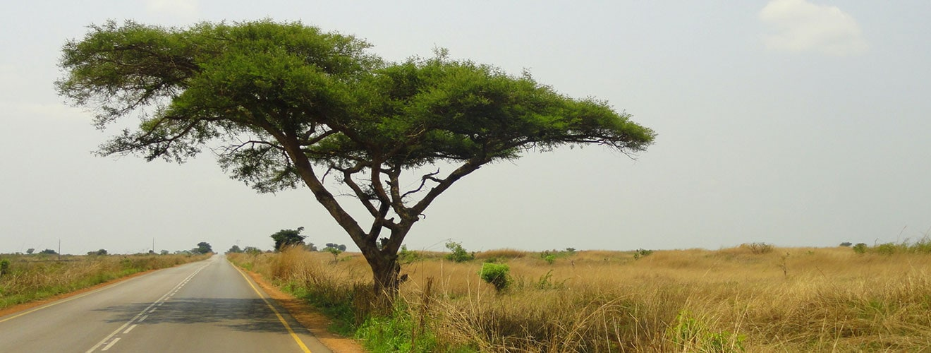 Interesting Facts About Angola