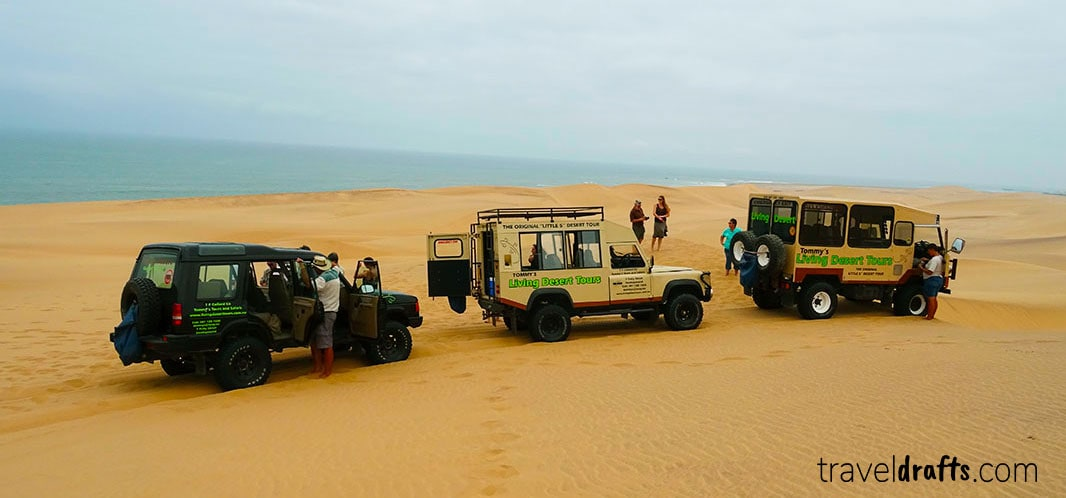 Tommy's living desert tour - what to do in Swakopmund