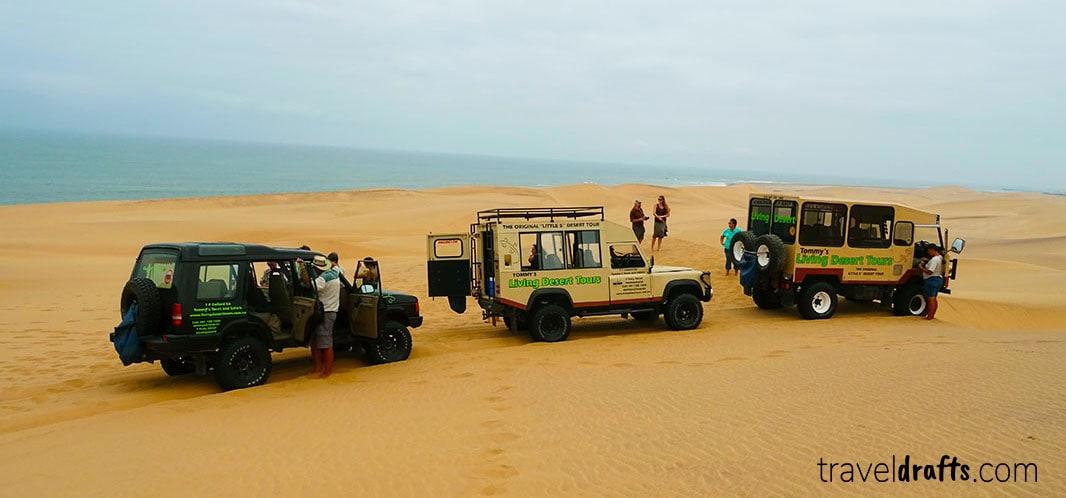 Tommy's living desert tour