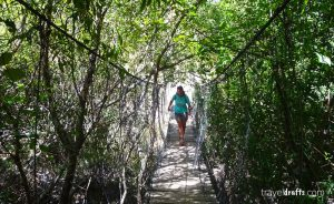 Tips on Los Cahorros trail