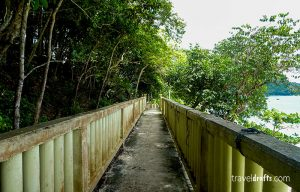 Hiking in the Big Perhentian Island