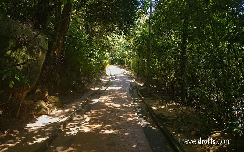 Penang National Park hiking