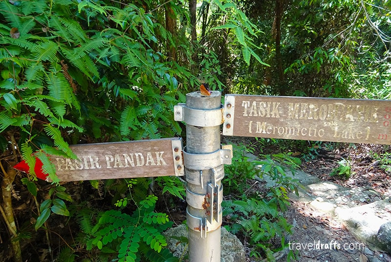The trail from Monkey Beach Penang
