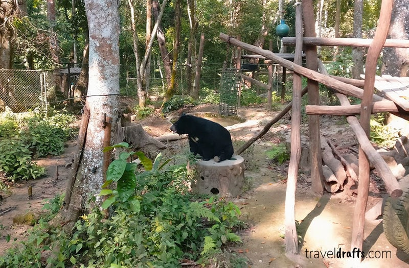 What to i need to know about Laos - Visit Bear Park Laos