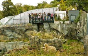Visit Schonbrunn Zoo in Vienna