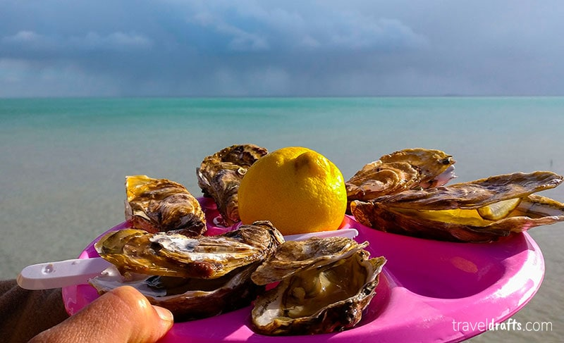Eat oysters in Cancale in one must do experiences in Brittany