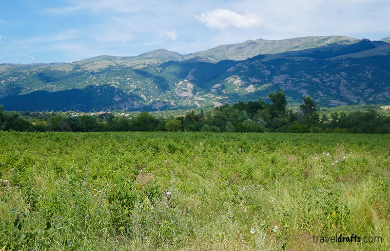 Things to do in Bulgaria - Go to the Rose Valley