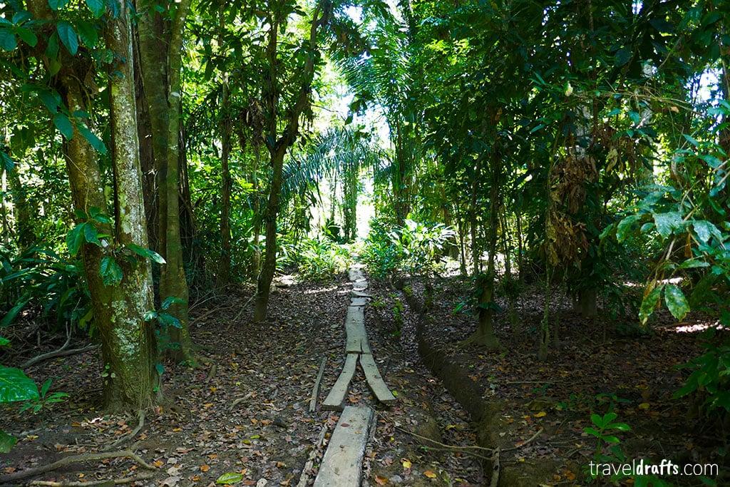 Costa Rica guia de Viagens - Gandoca Manzanillo National Wildlife Refuge