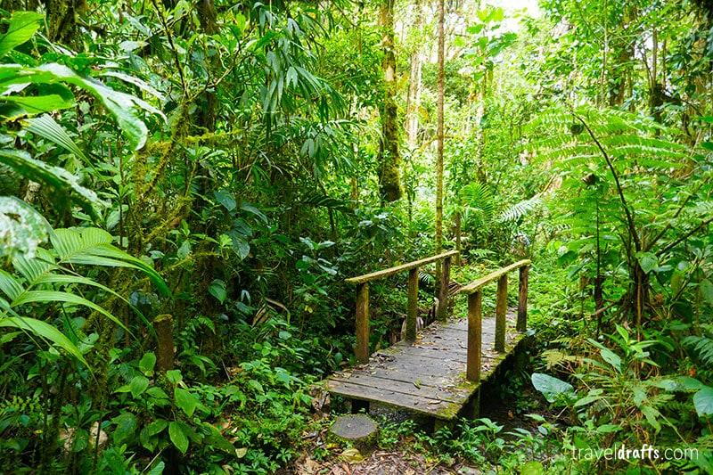 Viajar Panamá - trilho dos quetzals