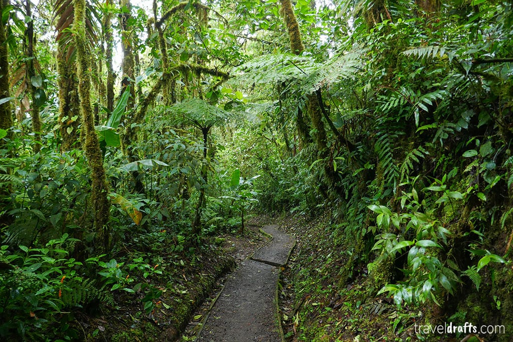 Outdoors activities in Costa Rica and Panama