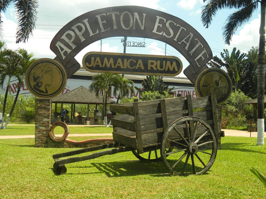 The Rum is one of the most well known exports from Jamaica