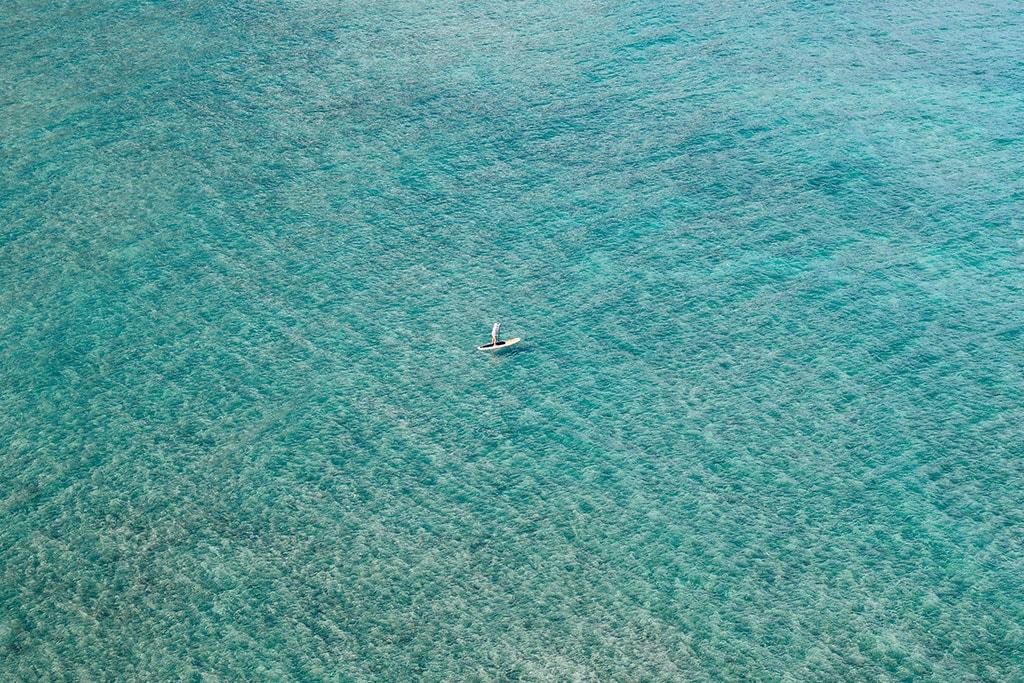 Maui or Oahu