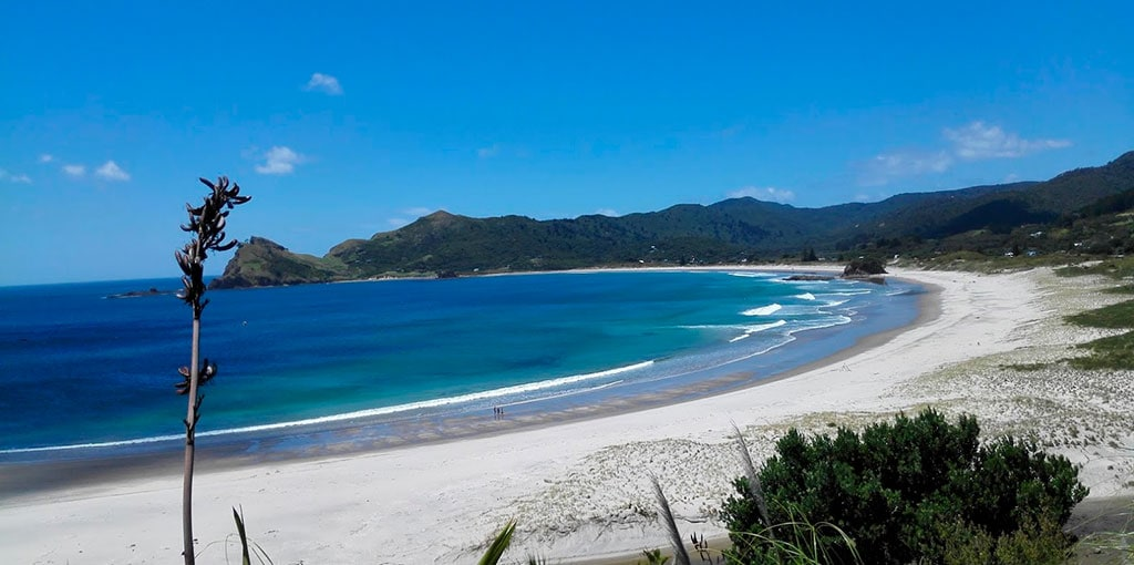 What is New Zealand known for? The scenery