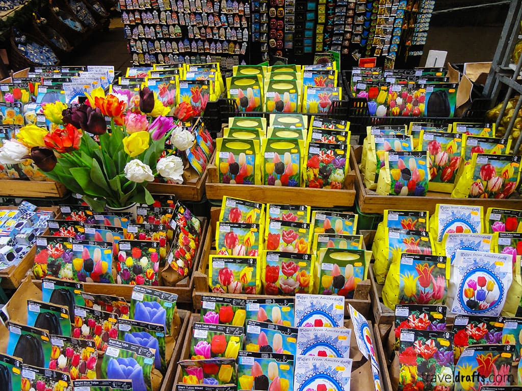 what to do an Amsterdam layover