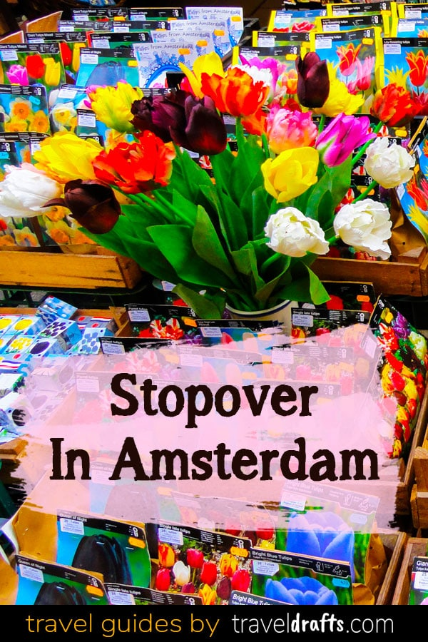 What to do in a Layover in Amsterdam