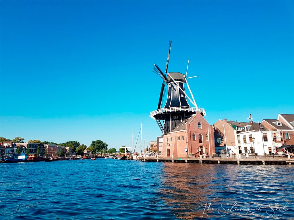 What is Netherlands famous for