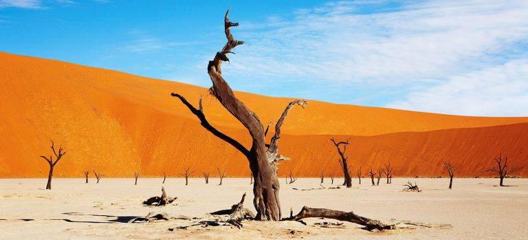 What Is Namibia Famous For