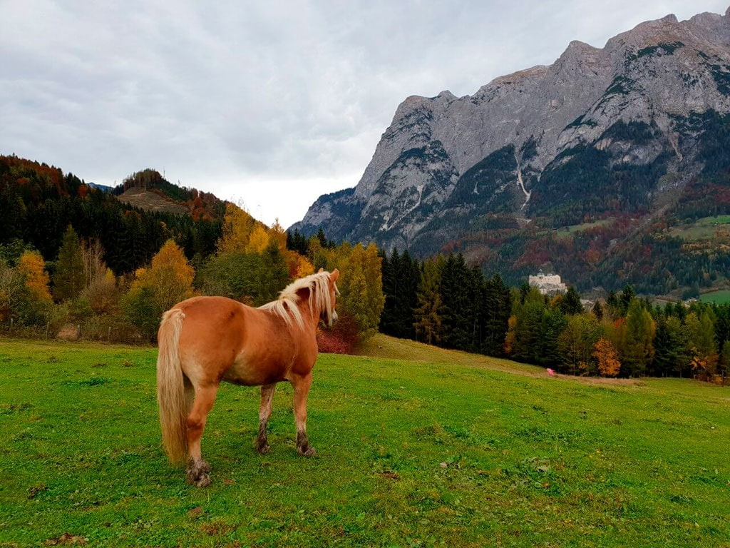 2 Hour day trips from Vienna