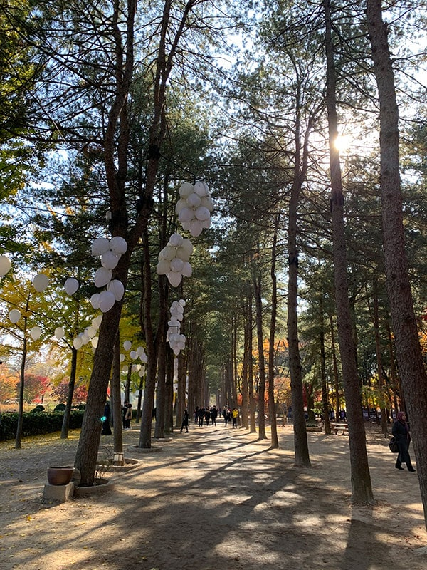 Things To Do In Seoul In The Winter