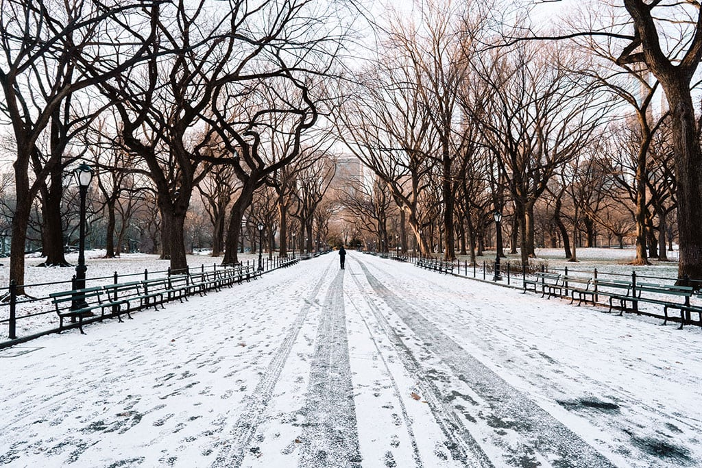 What to do in NYC in winter
