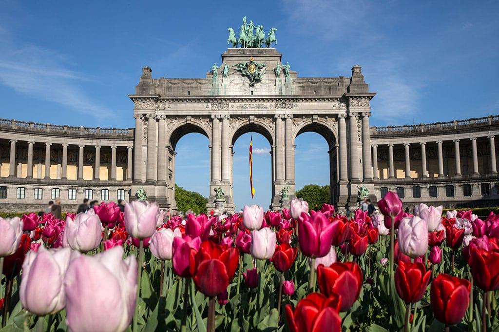 Tulips and the Cinquantenaire Arcade, a historic landmarks in Belgium