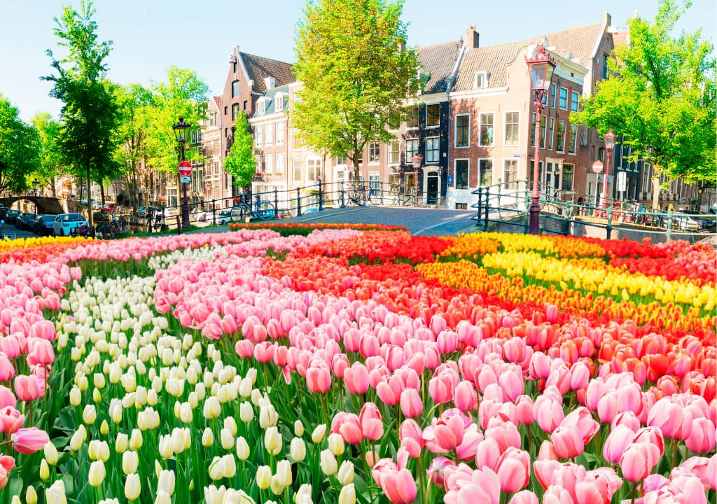 Famous things about Amsterdam