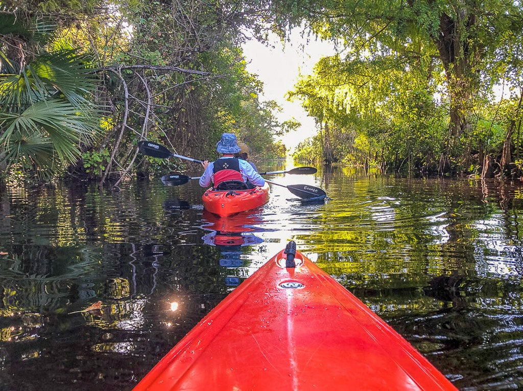 Kayaking in the Everglades National Park
