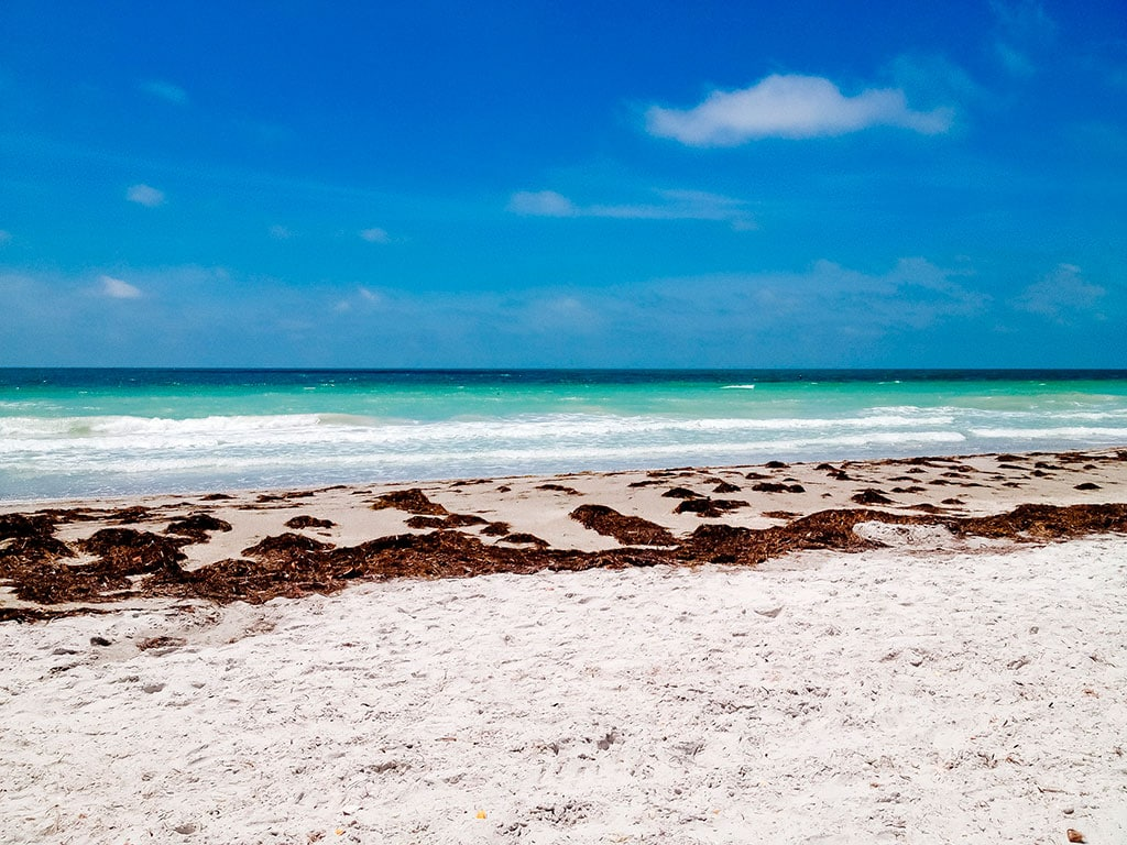 honeymoon island 18 Famous landmarks in Florida you can't miss