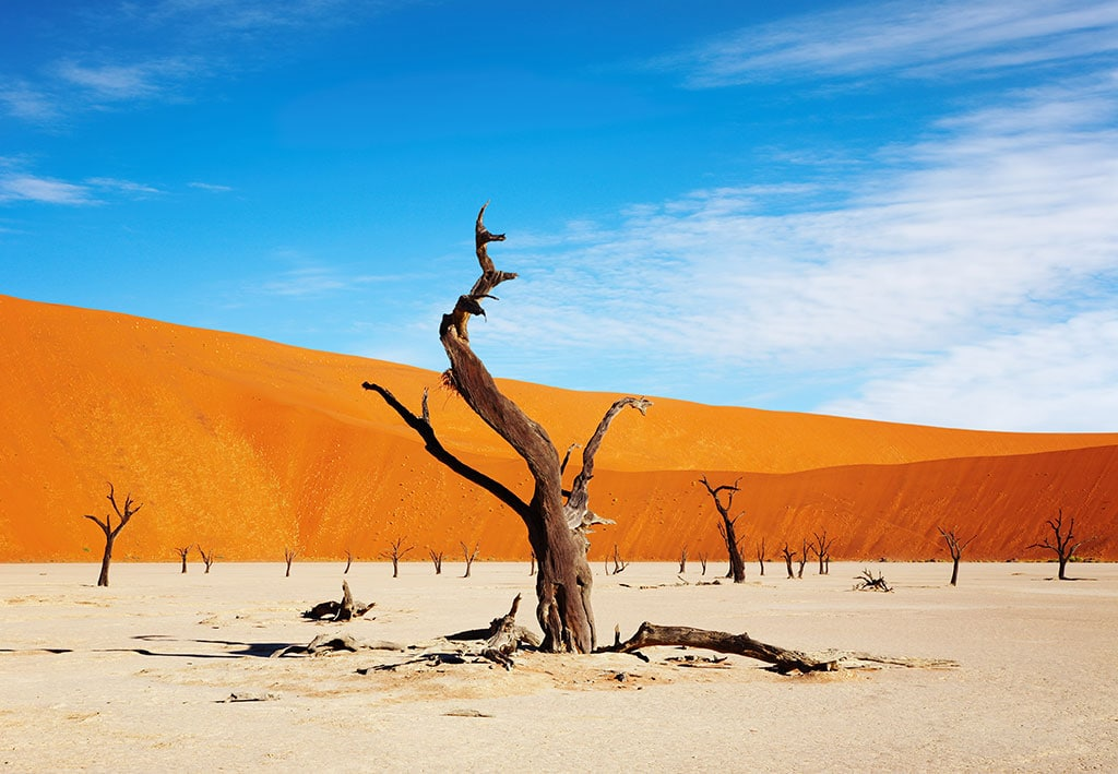 things Namibia is famous for